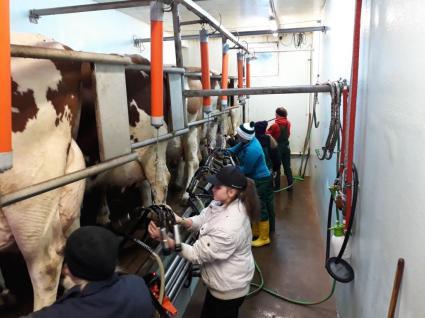 LFS Buchhof Tierpflegekurs